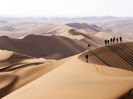 oasi-nel-deserto