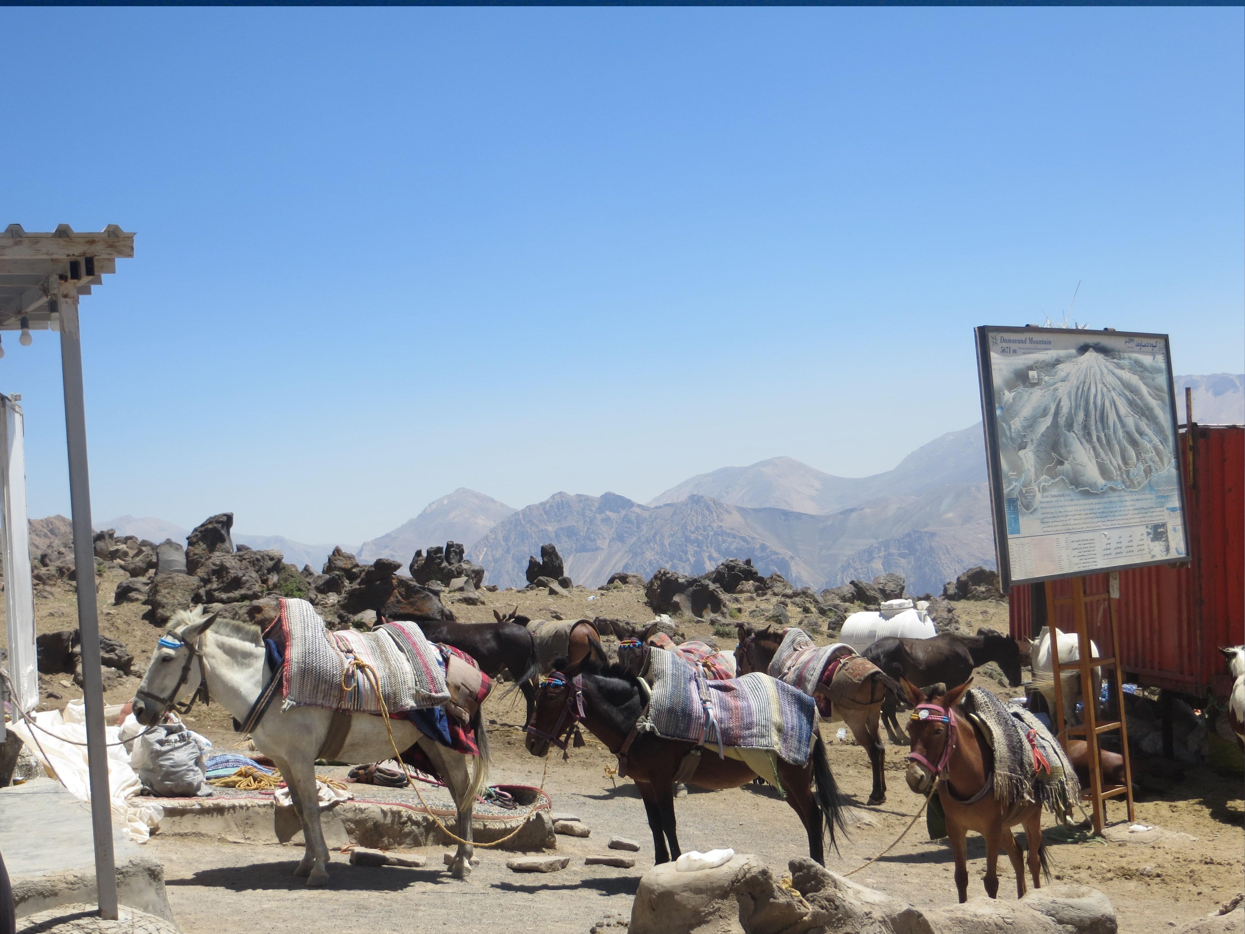 07. Camp 2, Goosfand-sara (3050 m)