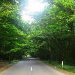 Gisoom-Road, Gisoom.