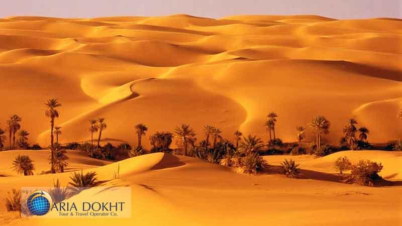 Loot-desert