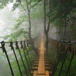 Namak-Abrood, Forest Park, Advanture, Park